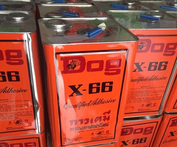 Keo Dog X66 ( 15kg )